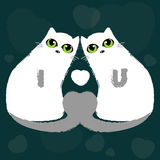 Love cats, valentines Royalty Free Stock Photography