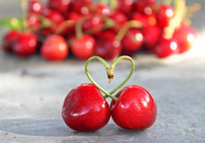 Love of cherries Stock Photo