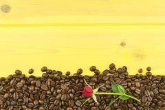 We love coffee. Roses resting on the coffee. Coffee beans, poured out on Yellow wooden table. Background for your text Stock Photography