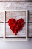 Love composition. Studio shot. Stock Images