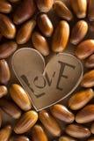 Love concept. Stock Photos