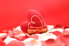 Love concept with heart. Rose petals, heart, cinnamon on a red background Royalty Free Stock Photo