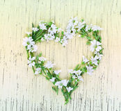Love concept with heart symbol made of flowers. Love concept with heart symbol made of small white flowers on rustic wooden background. Flat lay. Top view royalty free stock images