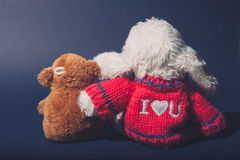 Love concept peluches Royalty Free Stock Images