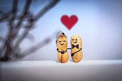 Love concept. Wedding. Date in the evening. Creative hand made couple made from nuts. Stock Photo