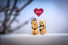 Love concept. Wedding. Date in the evening. Creative hand made couple made from nuts. Stock Photos