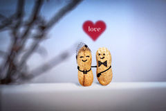 Love concept. Wedding. Date in the evening. Creative hand made couple made from nuts. Royalty Free Stock Photo