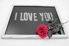 Love. Concepts and ideas. i love you stock photos