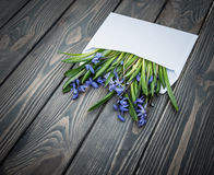 Love confession. Envelope with a bouquet of flowers. Easter spring card. Congratulatory envelope with a bouquet of wild flowers - blue forest wooded area on the Royalty Free Stock Photo