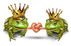 Love Couple. And wedding and romantic couple featuring fun princess bride and prince groom frogs with their tongues tied in a knot to form a heart with gold royalty free illustration