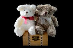 Love couple bear Stock Images
