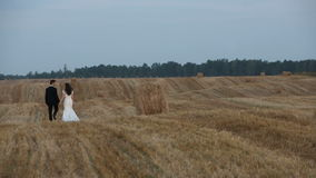 Love couple goes on cleaner wheat field on the field are seen haystacks stock video