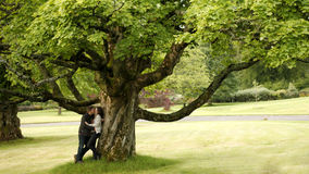 Love couple in park. Love couple kissing under the tree in park Royalty Free Stock Photography