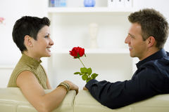 Love couple - rose Royalty Free Stock Photo