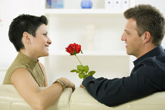 Love couple - rose Stock Images