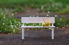 Love couple sitting on the bench. Love fruits sitting on the white bench Royalty Free Stock Photo