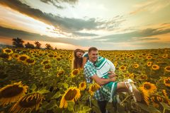 Love couple standing outdoors in sunflower field Royalty Free Stock Images