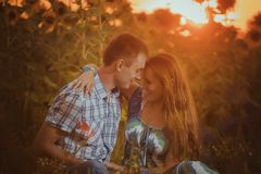 Love couple standing outdoors in sunflower field Stock Image