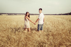 Love couple walking in field holding hands Stock Photos