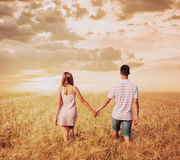 Love couple walking in sunset field holding hands royalty free stock images