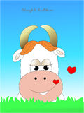 In love cow Stock Image