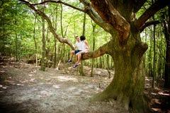Love - date on tree Stock Photo