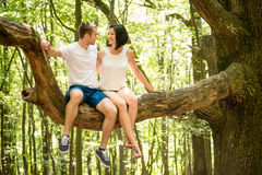 Love - date on tree Stock Images