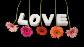 LOVE decorated with flowers royalty free stock images