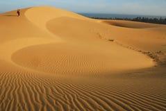 Love in Desert Stock Photo