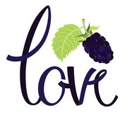Love Design card with lettering and blackberry Royalty Free Stock Photo