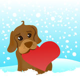 Love dog Royalty Free Stock Photos