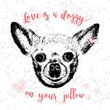Love is a doggy on your pillow. Stock Photo