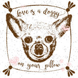 Love is a doggy on your pillow. Stock Photography
