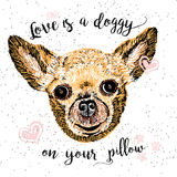 Love is a doggy on your pillow, love quote about dogs. Stock Photos