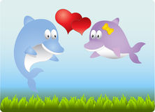 In love dolphins Stock Photography