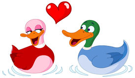 In love ducks. Two Adorable Ducks In Love Under A Red Heart Royalty Free Stock Photo