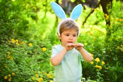 Love easter. Family holiday. Little boy child in green forest. Egg hunt on spring holiday. Happy easter. Childhood. Rabbit kid with bunny ears. Hare. Feeling stock photos