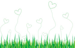 Love ecology. Ecology love background using grass Royalty Free Stock Photography