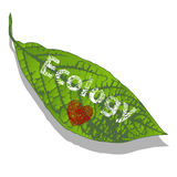 Love for ecology Royalty Free Stock Photography