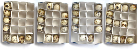 Love and eggs. Love word from quail's eggs in a papaer boxes stock photography