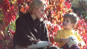 Love family. Happy mother and son outdoors. Mother and son playing in autumn park and having fun. Mother and children stock video