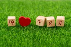 Love 14 feb valentine`s day. In wooden cube with heart shape on grass Royalty Free Stock Photo