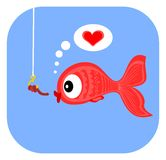 Love at first sight. Cute little red fish falling in love Royalty Free Stock Photo