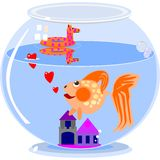 Love in a fish bowl Royalty Free Stock Photography