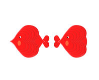 The Love of Fish (I): Male Fish Meet the Female. A male fish meet with a female fish. He has interest in her. So he turn his head and look her Stock Images