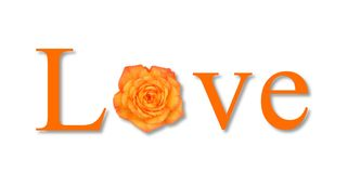 Love Flower Orange. The text love with a flower on white background Royalty Free Illustration