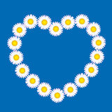 Love Flowers Heart Daisies Frame Royalty Free Stock Photo