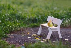 Love fruits sitting on the bench Royalty Free Stock Image