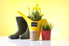 Love garden Royalty Free Stock Photography