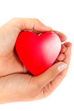 Love gift from thr heart. Female hands taking care of red heart Royalty Free Stock Photo